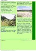 Naturturist - Svinkløv klitplantage - Page 3
