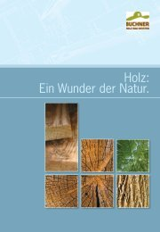 Holz: Ein Wunder der Natur.