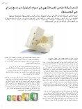 infocus arabic - Page 4
