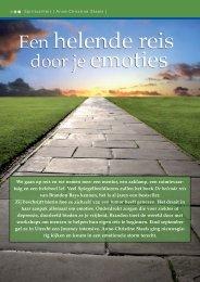 Spiegelbeeld januari 2008 - Praktijk Journey Therapie De Bron