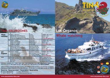 Los Órganos Whale watching - Excursiones Tina