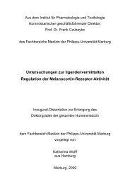 Untersuchungen zur ligandenvermittelten Regulation der ...
