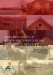 Implementation of Renewable Energy in the Republic of Moldova