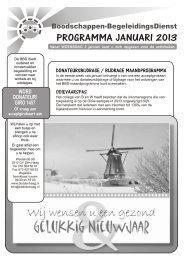 PROGRAMMA JANUARI 2013 - Boodschappen Begeleidingsdienst
