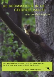 De brochure is hier te downloaden - De Zoogdiervereniging