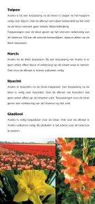 aramo bloembollen - Certis Europe - Page 3