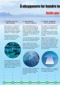 Sikker og effektiv oksygentilsetting for fiskeoppdrett - Page 4