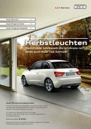 Damit jede Jahreszeit die schönste ist: jetzt zum Audi Top Service.