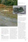 Artikel in Blauw: Reconstructie Xerxes Vermoord en Verbrand - Page 2