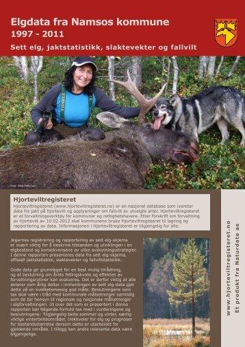 Eksempel på Grunnpakke elg - Naturdata as
