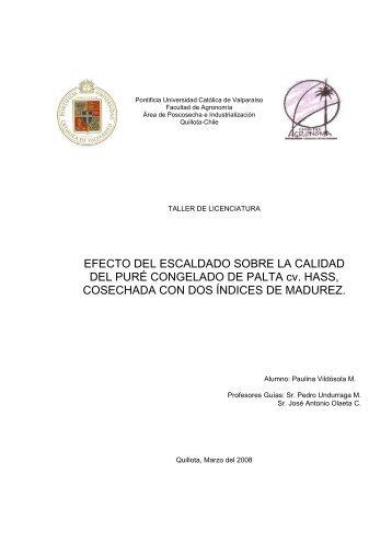 EFECTO DEL ESCALDADO SOBRE LA CALIDAD DEL ... - Altavoz