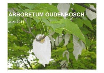 Presentatie Arboretum Oudenbosch, Jos van de Lindeloof