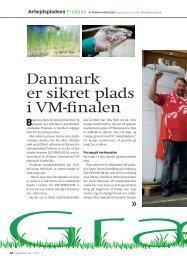 Danmark er sikret plads i VM-finalen - Prodana