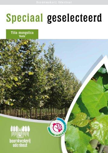 Speciaal geselecteerd - Udenhout Trees