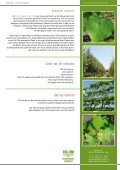Speciaal geselecteerd - Udenhout Trees - Page 2