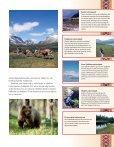 Kulturellt, vilt och vackert - Destination Jokkmokk - Page 5