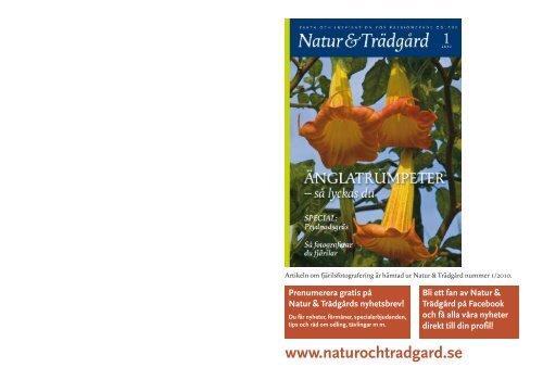 (pdf 0,44 MB) Format: uppslag. - Natur & Trädgård