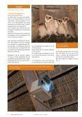 2010 - Werkgroep Kerkuilen - Page 6