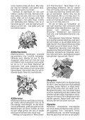 Fleråriga klättrare - Page 3