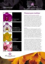 Nieuwsbrief - Floricultura