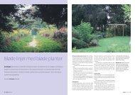 Bløde linjer med bløde planter - have-ideer.dk