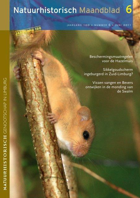 06 nhm juni - Natuurhistorisch Genootschap in Limburg
