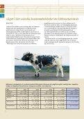 Den første undersøgelse af mælk fra bevaret Sortbroget ... - NordGen - Page 4