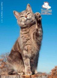 A ugust 2012 - årg ang 31 - nr. 3 - Inges Kattehjem