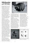 hedenbladet - Heden i Boden - Page 7
