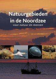 Natuurgebieden in de Noordzee voor natuur én mensen - Natuurpunt