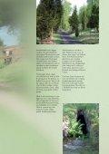 Huvudbroshyr sv.pdf - Page 7