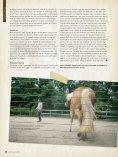 (1) Paarden als middel tot persoonlijke ontwikkeling - Page 3