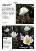 Jennys lyxlista våren 2012 Beställ för minst 600:- senast 4 mars - Page 2