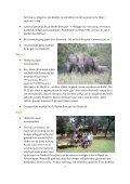 Kids in the Bush Kids in the Bush - Waterberg Bushveld Retreat - Page 3