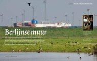 P+ over Haven van Antwerpen