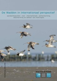 De Wadden in internationaal perspectief De Wadden in ...
