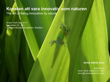 Konsten att vara innovativ som naturen