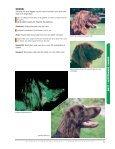 Långhårig Vorsteh - Mattedesign - Page 5
