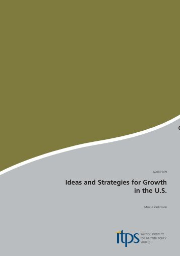 Ideas and Strategies for Growth in the US