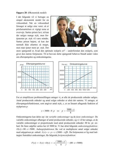 En opgave med en økonomimodel - matematikfysik