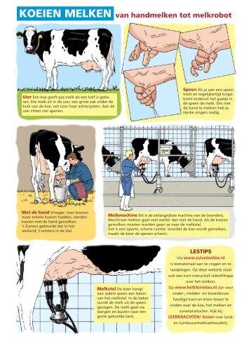 Koeien melken (PDF) - Zuivelonline