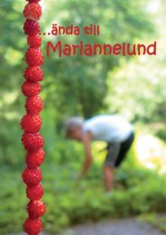 Untitled - Mariannelund