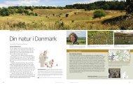 din natur i danmark - Danmarks Naturfredningsforening