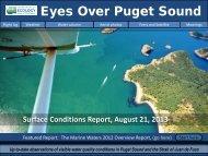 Eyes Over Puget Sound