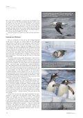 Aliens in Antarctica - Het Laatste Continent - Page 5