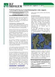 Vækstregulering og svampebekæmpelse i alm. rajgræs - DLF ...