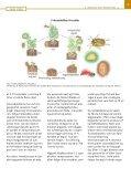 Grøn Viden - Page 3