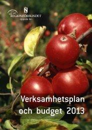 Verksamhetsplan och budget 2013 - Regionförbundet Uppsala län