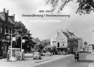 Steenwijkerweg | Heerenveenseweg - Nota Straatmakers bv