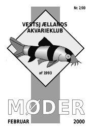 akvarieklub vestsjællands - Vestsjællands Akvarie- og Terrarieklub